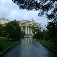 Художественный музей г.Сочи :: Валентина Юшкова