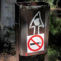 Бросай курить, иди пить пиво... :: Нина Бутко