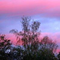 Закат в ночь красной луны. г Обь :: Ольга Кондратова