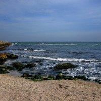 Морская шумная волна, и запах тины чуть запрелый,а в перерывах тишина и мягкий шепот пены белой... :: Людмила