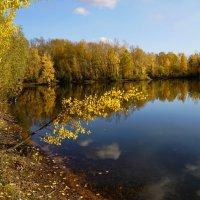 Золотая ветвь :: Наталия Григорьева