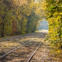 По дороге в осень :: Elena Ignatova