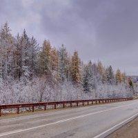 Vipal sneg :: Александр