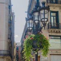 Барселона :: Светлана Королева