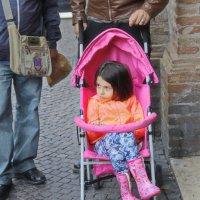 Маленькая Леди :: M Marikfoto