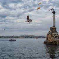 Осень в Севастополе. :: Nikolay Ya.......