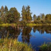Малиновское озеро :: Андрей Дворников