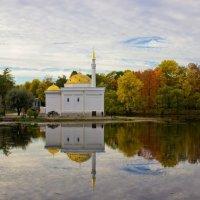 Турецкая мечеть в парке Царского Села :: Ирина Варская