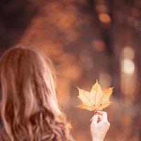 Осень :: Лера Динабург