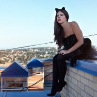 кошка гуляющая по крыше... :: Райская птица Бородина