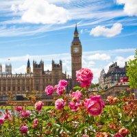 Лондон :: Elena Ignatova