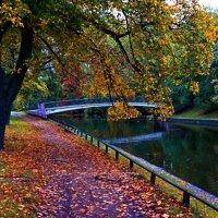 Сентябрь в Питере, на Черной речке. :: Валерий Симонов