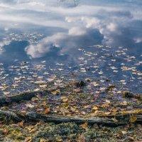 Небеса в воде! :: Борис Кононов