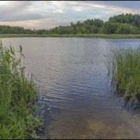 Белое озеро :: Юрий Клишин