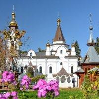 Гребневская церковь :: Леонид Иванчук