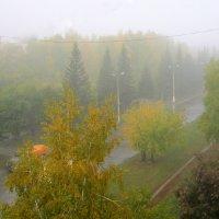 Утро туманное :: Мила Бовкун