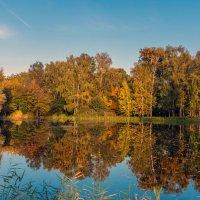 Осенние краски :: Rabbit Photo