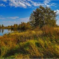 Что такое осень? :: Андрей Дворников