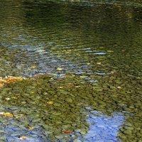 Вода в реке Кубань :: Игорь Сикорский
