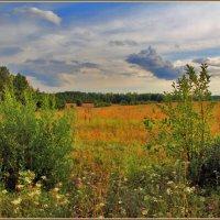 пейзажи русского севера :: Дмитрий Анцыферов