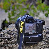 Новые приключения Nikon :: Марина Волкова