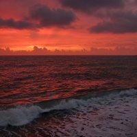 И розовый закат,и тёплый вечер.... :: Виолетта