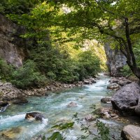 Горная река Абхазии :: Sergey Apinis