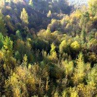 Осень :: Иван Верхотурцев