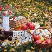 Уютная осень.. :: Анна Печкурова