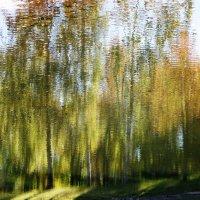 отражение осени... :: Марина Харченкова