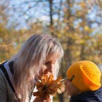 Это осень,малыш! :: Ирина Kачевская