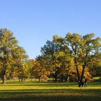 Александровский парк в октябре... :: Tatiana Markova
