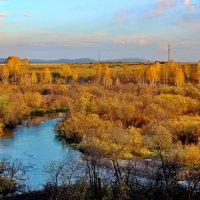 Янтарная осень. :: Наталья Юрова