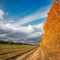 Осень :: Иван Янковский