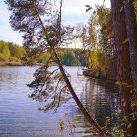 На озере :: Александр Ковальчук