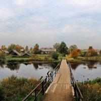 Река Боровка :: Владимир Ячменёв