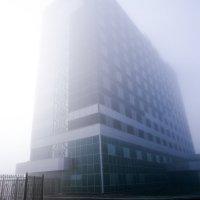 Отель Сити в тумане :: Татьяна Губина