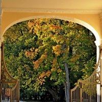 Врата в осень :: Александр Яковлев