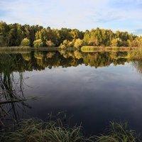 Октябрь :: Андрей Шаронов