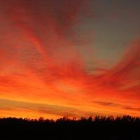 Розовый закат :: Александр Робинович