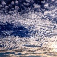 Перистые облака над Шумилином. :: Анатолий Клепешнёв