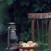Осень не за горами.... :: Оля *