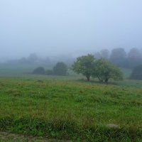 Утро (туман) :: Юрий Бондер