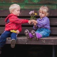 Я дарю тебе цветочек :: Natalya Kopyl