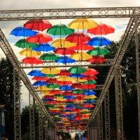 парящие зонтики :: Сергей Кочнев