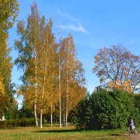 В парке :: Наталья Лунева