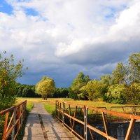 Мост к опушке леса :: Диана Задворкина