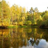 Лесное озеро :: Диана Задворкина