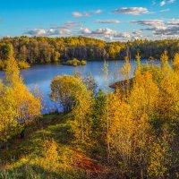 Золотая осень :: Анатолий