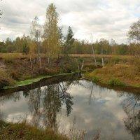 На берегах реки Серёжа. :: Николай Масляев